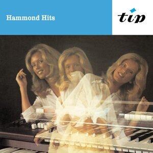 Hammond Ensemble Konrad Grewe 歌手頭像