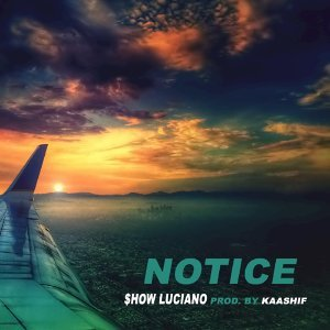S.h.o.w. Luciano 歌手頭像
