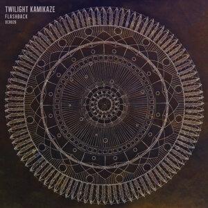 Twilight Kamikaze 歌手頭像