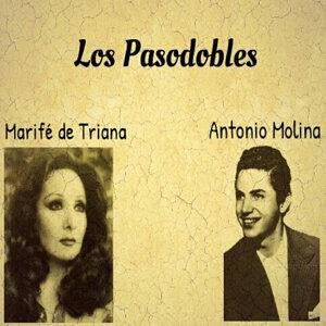 Marifé de Triana, Antonio Molina 歌手頭像