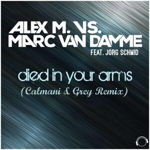 Alex M. & Marc van Damme feat. Jorg Schmid 歌手頭像