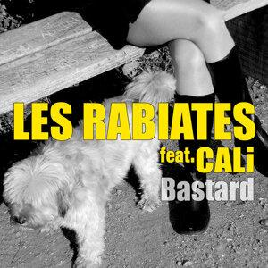 Les Rabiates 歌手頭像