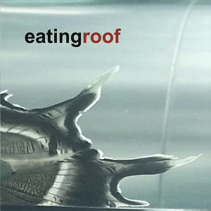 EatingRoof 歌手頭像