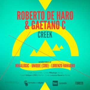Roberto de Haro & Gaetano C 歌手頭像