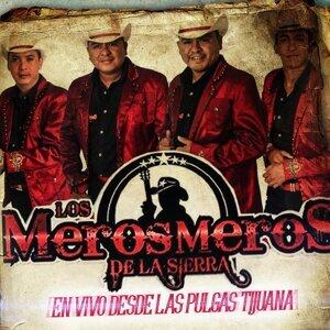 Los Meros Meros De La Sierra 歌手頭像