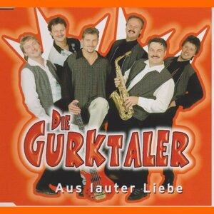Die Gurktaler 歌手頭像