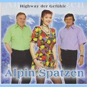 Alpin Spatzen 歌手頭像