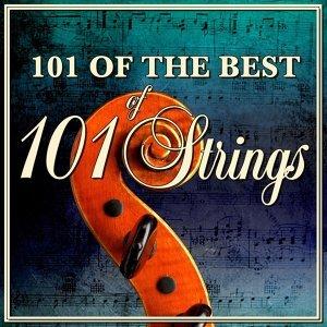 101 Strings 歌手頭像