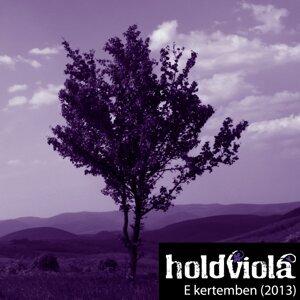 Holdviola 歌手頭像