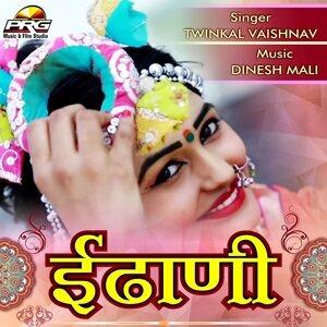 Twinkal Vaishnav 歌手頭像