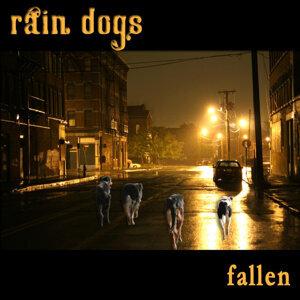 Rain Dogs 歌手頭像