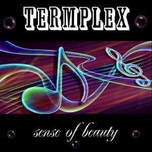 Termplex 歌手頭像