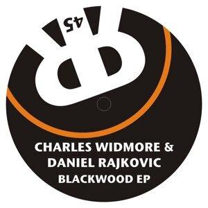 Charles Widmore & Daniel Rajkovic 歌手頭像