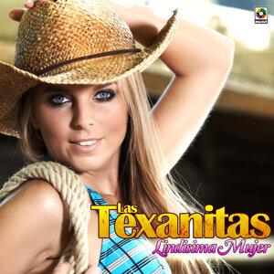 Las Texanitas 歌手頭像