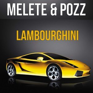 Melete, Pozz 歌手頭像
