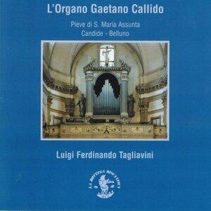 Luigi Ferdinando Tagliavini 歌手頭像