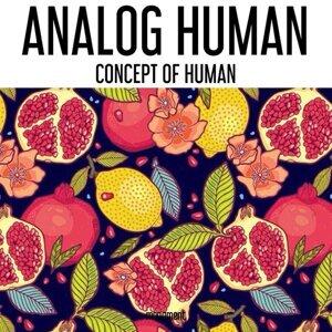 Analog Human 歌手頭像