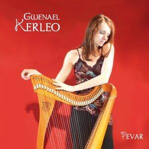 Gwenaël Kerléo 歌手頭像