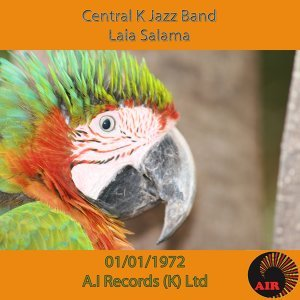 Central K Jazz Band 歌手頭像
