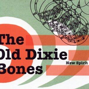 The Old Dixie Bones 歌手頭像
