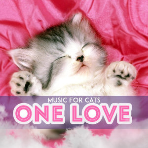 Music For Cats 歌手頭像