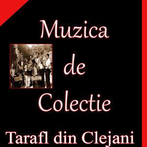 Tarafl din Clejani 歌手頭像