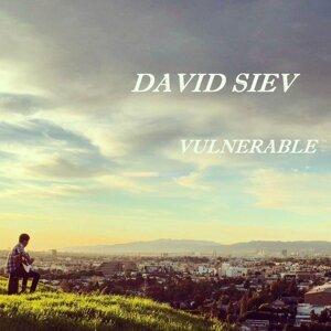 David Siev 歌手頭像