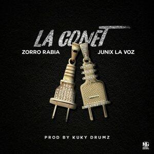 Zorro Rabia 歌手頭像