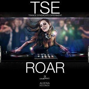 TSE Trance Syndacate Experiment 歌手頭像