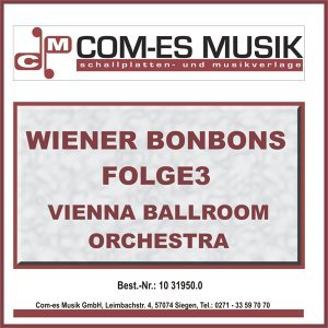 Vienna Ballroom Orchestra 歌手頭像