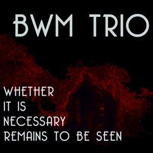 BWM Trio 歌手頭像