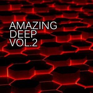 Bad Danny, Cristian Agrillo, Deepend, Dima Rise, DJ Volya, DMC Bilan, Ed Krutikov, Eget Integra 歌手頭像