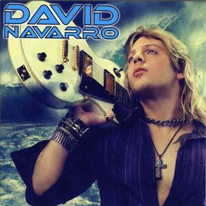 David Navarro 歌手頭像