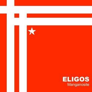 Eligos 歌手頭像