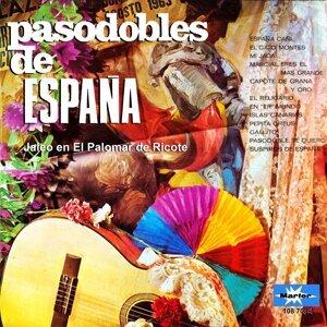 Cuadro Flamenco de el Palomar de Ricote 歌手頭像