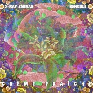 X-Ray Zebras, Bengale 歌手頭像