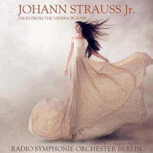 Radio Symphonie Orchester Berlin 歌手頭像