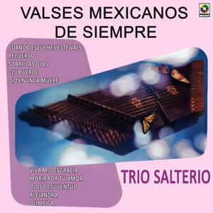 Trio Salterio 歌手頭像