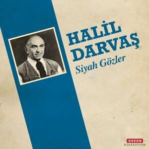 Halil Darvaş 歌手頭像