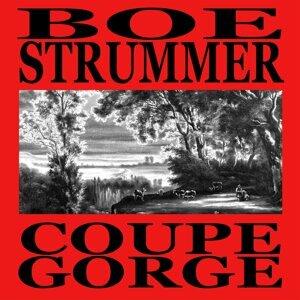 Boe Strummer 歌手頭像