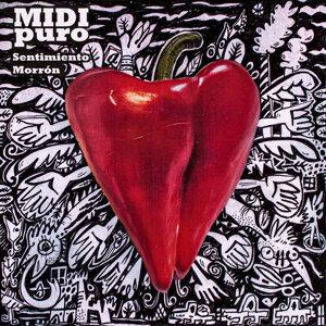 MIDI PURO 歌手頭像