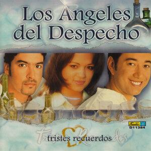 Los Angeles del Despecho 歌手頭像