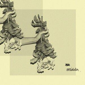Medula 歌手頭像