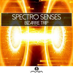 Spectro Senses, Sesto Sento, Sesto Sento, Spectro Senses 歌手頭像