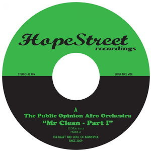 The Public Opinion Afro Orchestra 歌手頭像