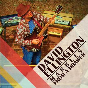 David Ellington 歌手頭像