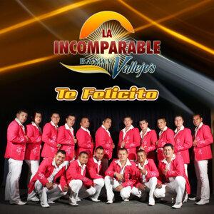 La Incomparable Banda Vallejos 歌手頭像