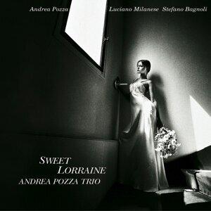 Andrea Pozza Trio 歌手頭像