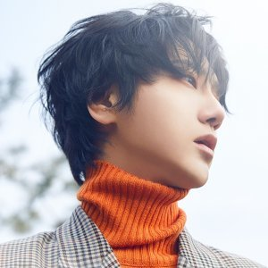 藝聲 (YESUNG) Artist photo