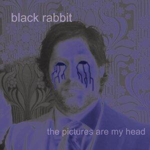 Black Rabbit 歌手頭像